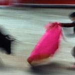 france-bullfight-tarascon-thumb